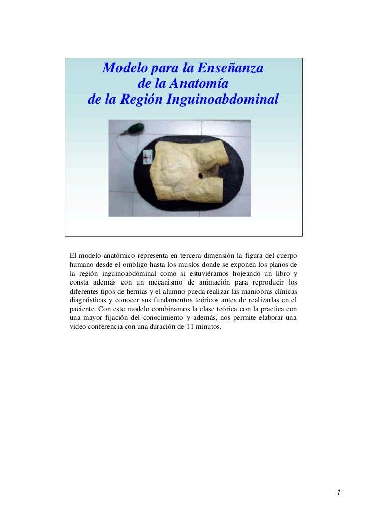 Modelo para la Enseñanza               de la Anatomía       de la Región Inguinoabdominal     El modelo anatómico represen...