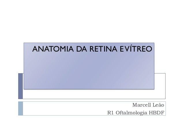 ANATOMIA DA RETINA E VÍTREO                         Marcell Leão                R1 Oftalmologia HBDF