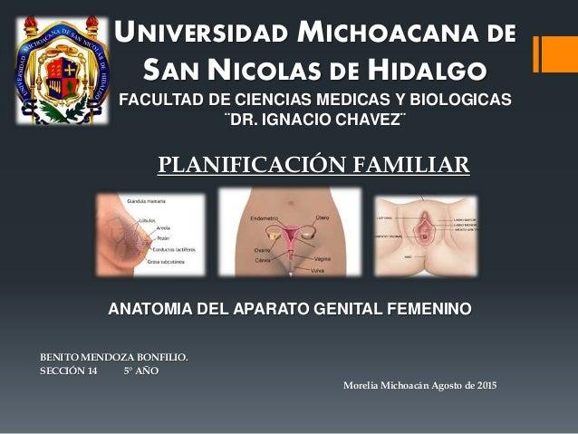 UNIVERSIDAD MICHOACANA DE SAN NICOLAS DE HIDALGO FACULTAD DE CIENCIAS MEDICAS Y BIOLOGICAS ¨DR. IGNACIO CHAVEZ¨ BENITO MEN...