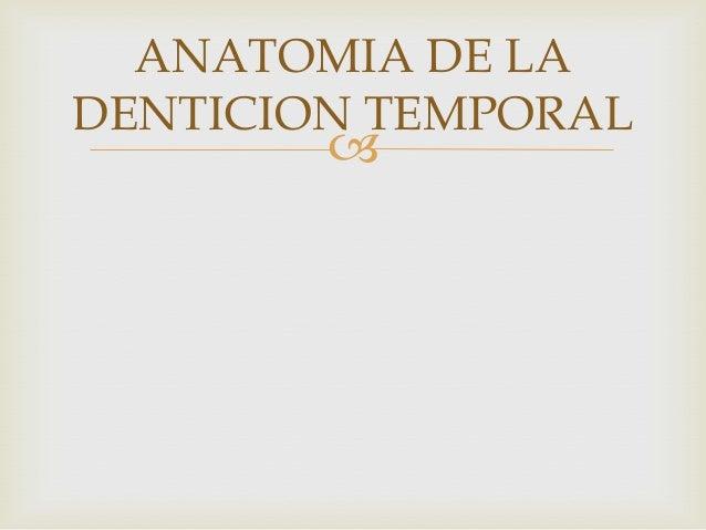Anatomia de la denticion temporal