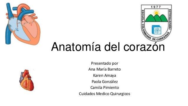 Anatomía del corazón  Presentado por  Ana María Barreto  Karen Amaya  Paola González  Camila Pimiento  Cuidados Medico Qui...