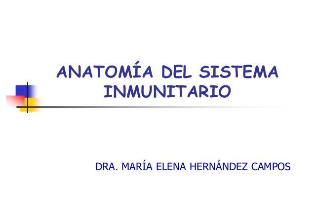 ANATOMÍA DEL SISTEMA    INMUNITARIO   DRA. MARÍA ELENA HERNÁNDEZ CAMPOS