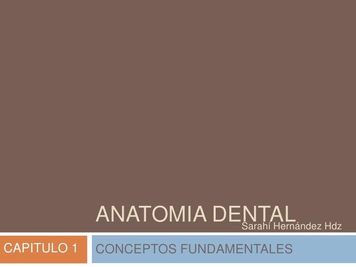 Anatomia dental cap 1 sarahi