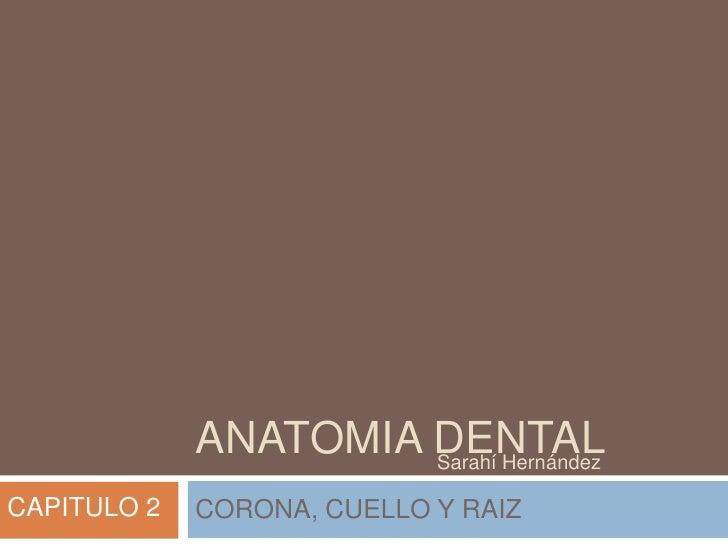 ANATOMIA DENTAL                      Sarahí HernándezCAPITULO 2   CORONA, CUELLO Y RAIZ