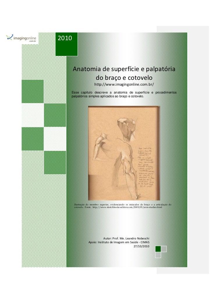 2010       Anatomia de superfície e palpatória             do braço e cotovelo                        http://www.imagingon...