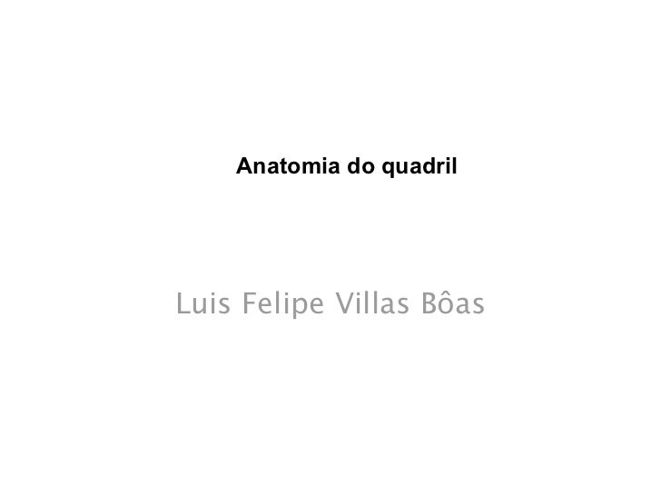 ANATOMIA DO QUADRILATOMIANATOMIA DO QUADRIL  A ANATOMIA DO Anatomia do quadril           Luis Felipe Villas Bôas