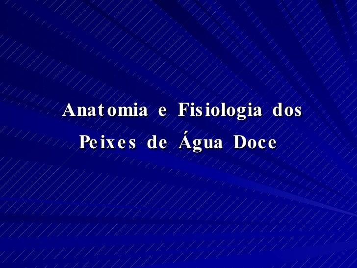 <ul><li>Anatomia e Fisiologia dos  </li></ul><ul><li>Peixes de Água Doce </li></ul>