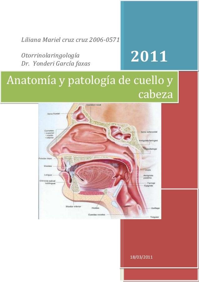 Liliana Mariel cruz cruz 2006-0571  Otorrinolaringología  Dr. Yonderi García faxas                                       2...