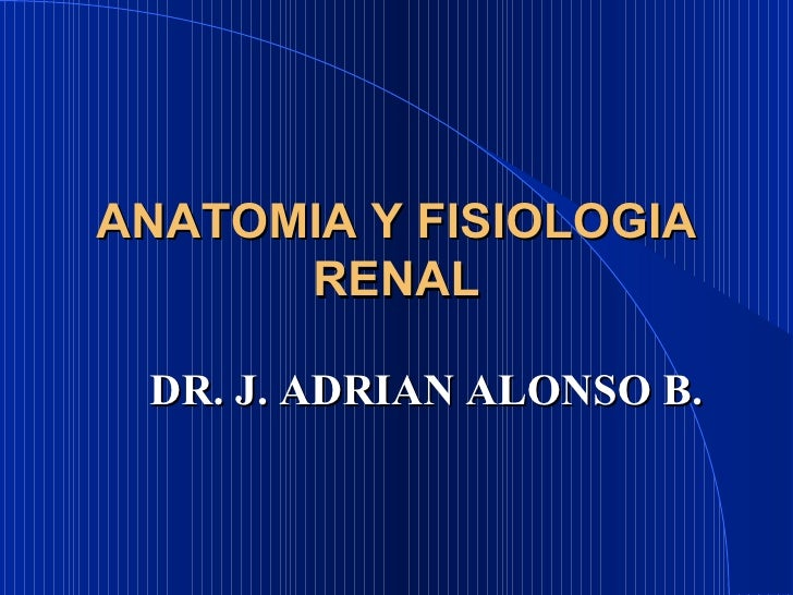 ANATOMIA Y FISIOLOGIA RENAL DR. J. ADRIAN ALONSO B.