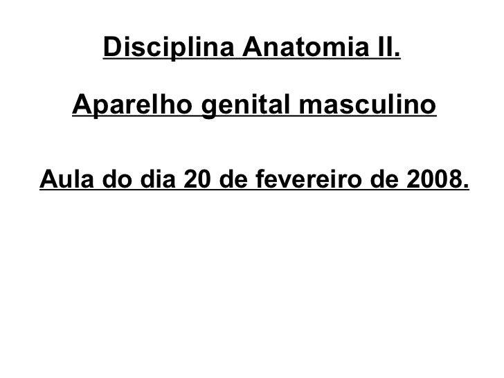 Disciplina Anatomia II. <ul><li>Aparelho genital masculino </li></ul><ul><li>Aula do dia 20 de fevereiro de 2008. </li></ul>