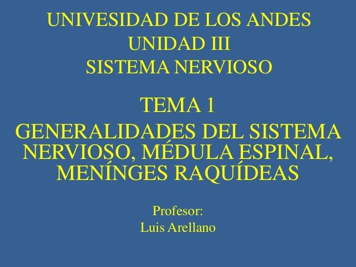 UNIVESIDAD DE LOS ANDES         UNIDAD III     SISTEMA NERVIOSO          TEMA 1GENERALIDADES DEL SISTEMANERVIOSO, MÉDULA E...