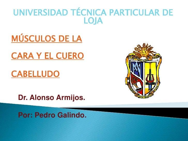UNIVERSIDAD TÉCNICA PARTICULAR DE               LOJA  MÚSCULOS DE LA  CARA Y EL CUERO  CABELLUDO   Dr. Alonso Armijos.   P...