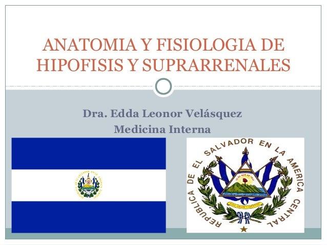 ANATOMIA Y FISIOLOGIA DEHIPOFISIS Y SUPRARRENALES    Dra. Edda Leonor Velásquez         Medicina Interna