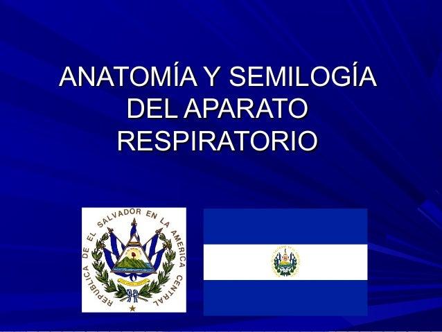ANATOMÍA Y SEMILOGÍA    DEL APARATO   RESPIRATORIO