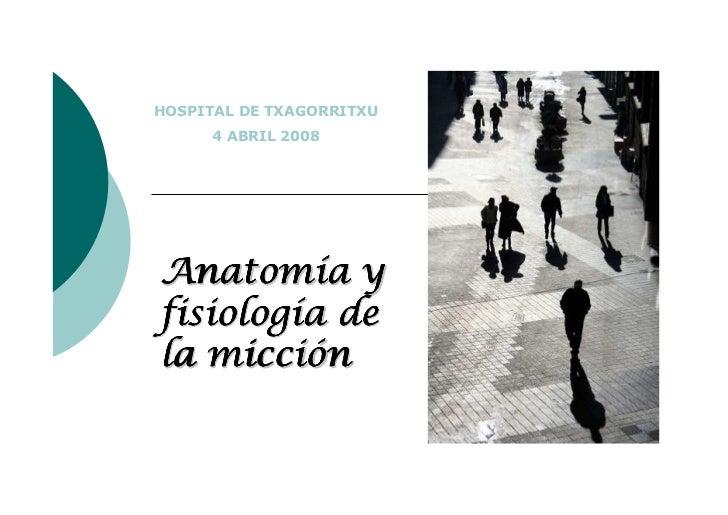 HOSPITAL DE TXAGORRITXU      4 ABRIL 2008Anatomía yfisiología dela micción