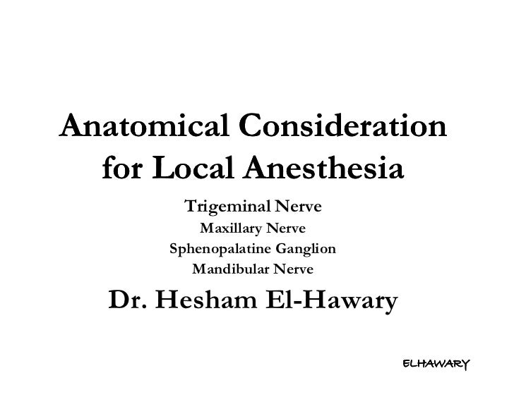 Anatomical consideration for local anesthesia [innervation]