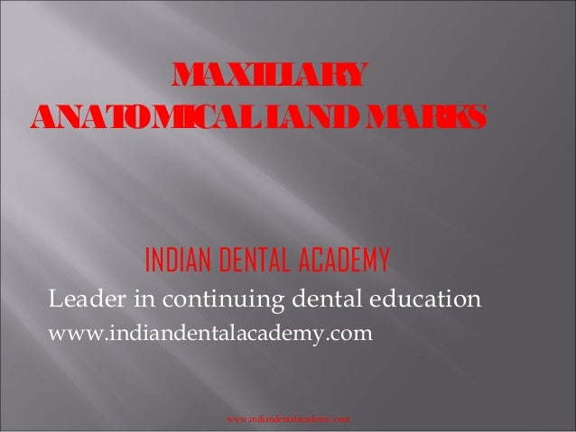 M AXIL ARY L ANAT ICAL L OM AND M ARK S  INDIAN DENTAL ACADEMY Leader in continuing dental education www.indiandentalacade...