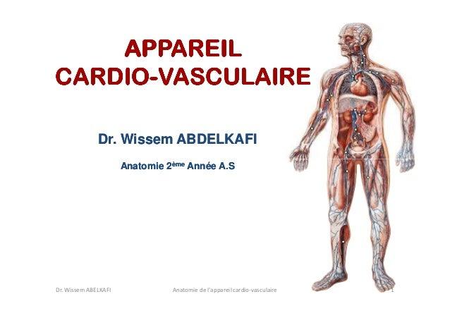 APPAREIL CARDIOCARDIO-VASCULAIRE Dr. Wissem ABDELKAFI Anatomie 2ème Année A.S  Dr. Wissem ABELKAFI  Anatomie de l'appareil...