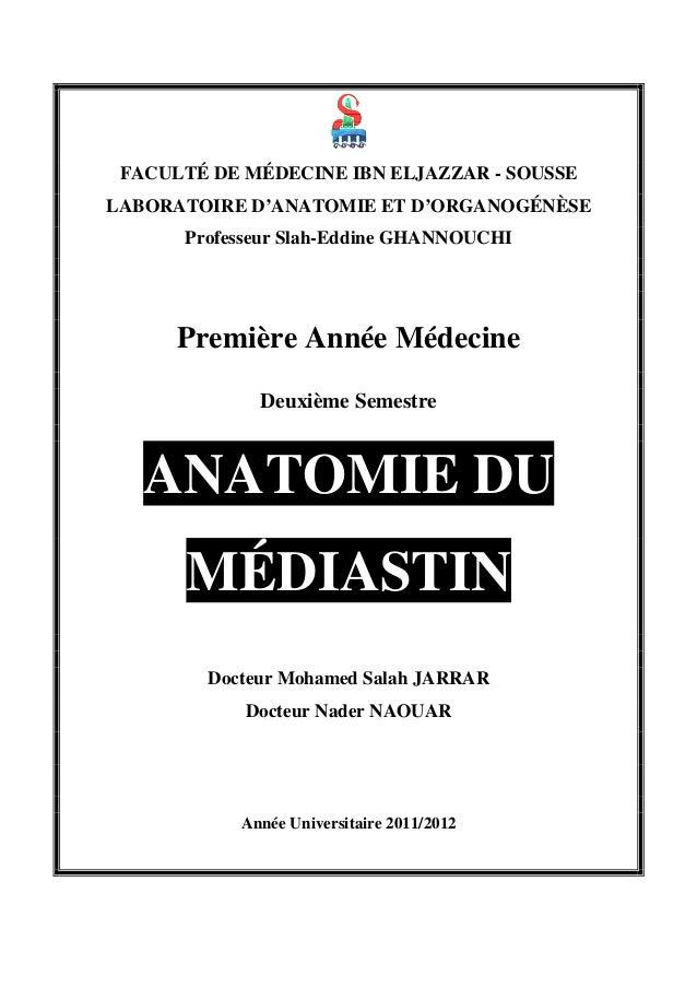 FACULTÉ DE MÉDECINE IBN ELJAZZAR - SOUSSE LABORATOIRE D'ANATOMIE ET D'ORGANOGÉNÈSE Professeur Slah-Eddine GHANNOUCHI  Prem...
