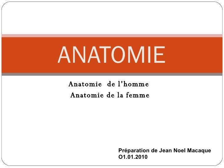 Anatomie  de l'homme  Anatomie de la femme ANATOMIE Préparation de Jean Noel Macaque O1.01.2010