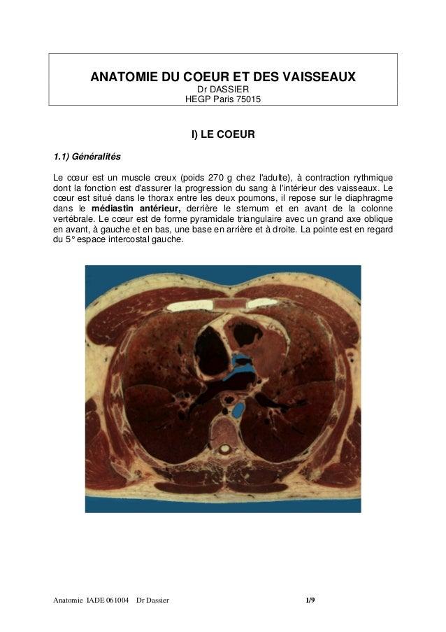 ANATOMIE DU COEUR ET DES VAISSEAUX                                    Dr DASSIER                                  HEGP Par...
