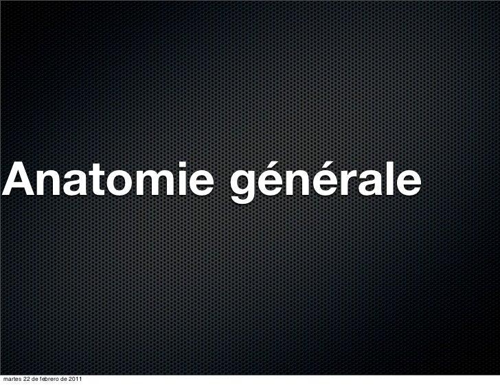 Anatomie généralemartes 22 de febrero de 2011