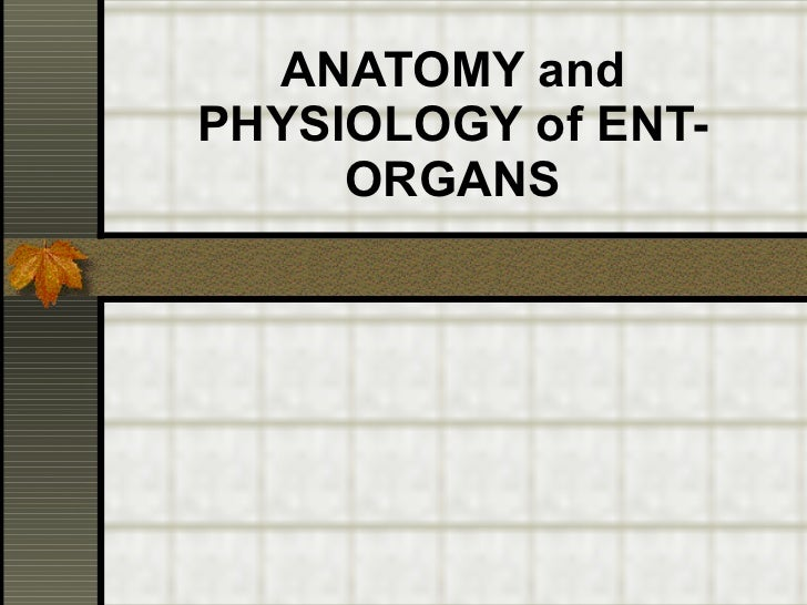 ANATOMY and PHYSIOLOGY of ENT-ORGANS