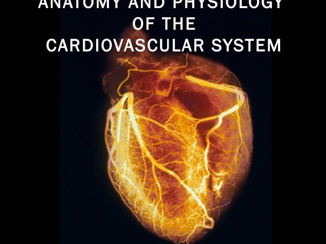 Anatomy and-physiology-of-the-cardiovascular-system-medical-surgical-nursing-ppt