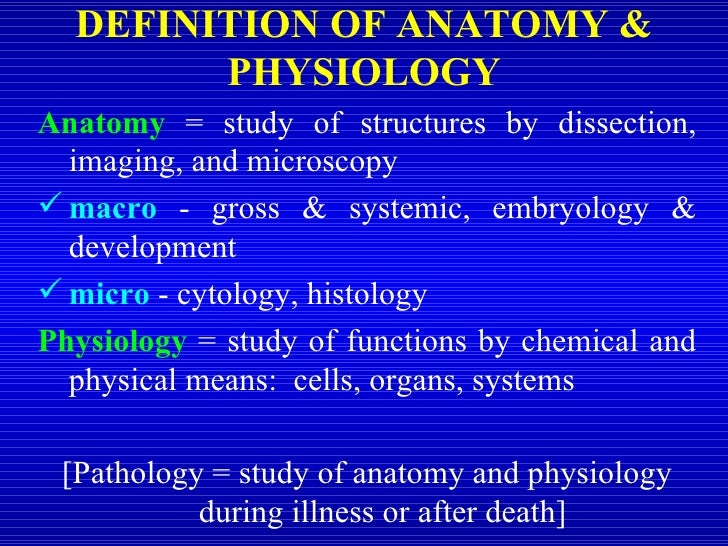 An analysis of studying physiology throughout history Term paper ...