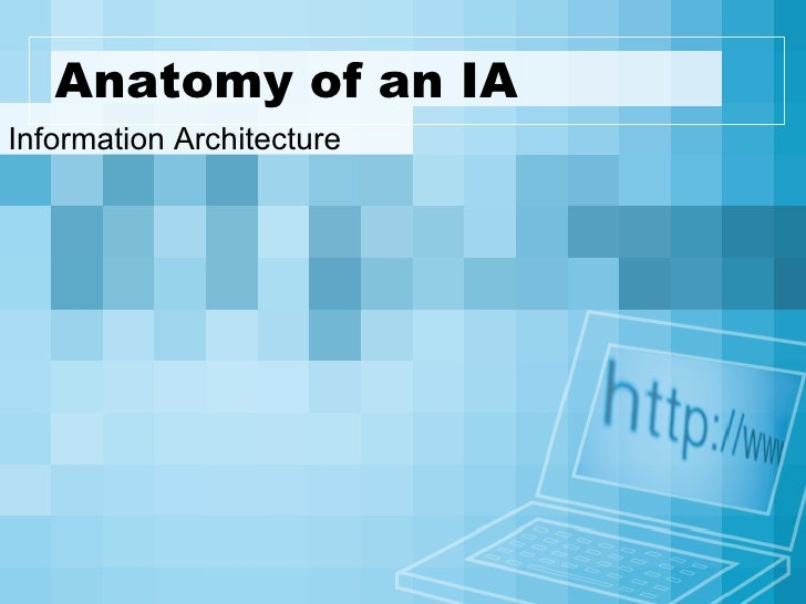 Anatomy of an IA Information Architecture