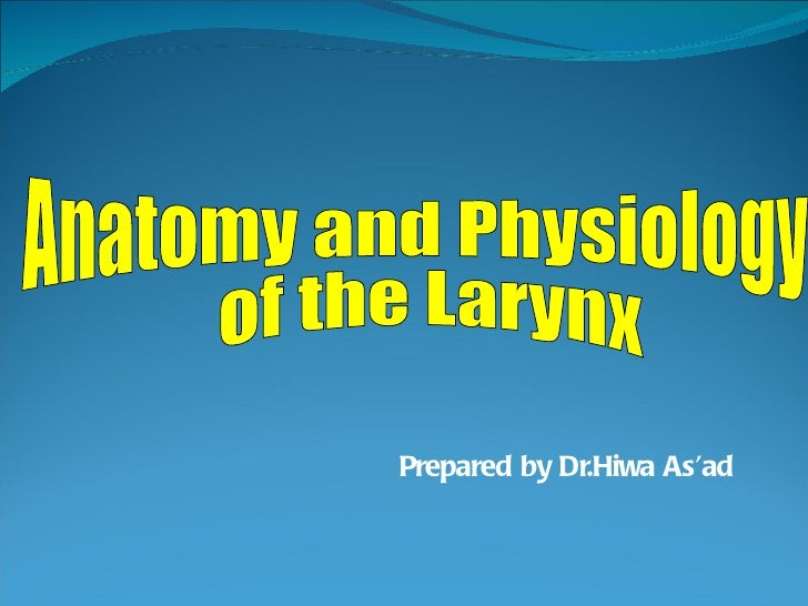 Prepared by Dr.Hiwa As'ad Anatomy and Physiology of the Larynx