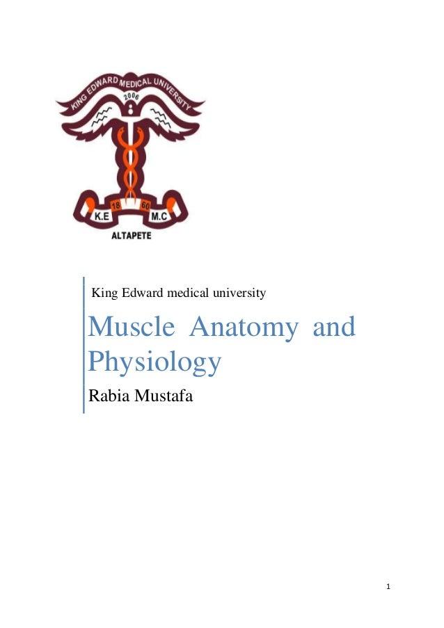 1 King Edward medical university Muscle Anatomy and Physiology Rabia Mustafa