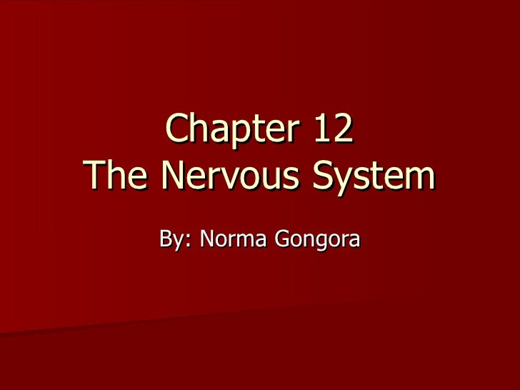 Chapter 12 The Nervous System By: Norma Gongora