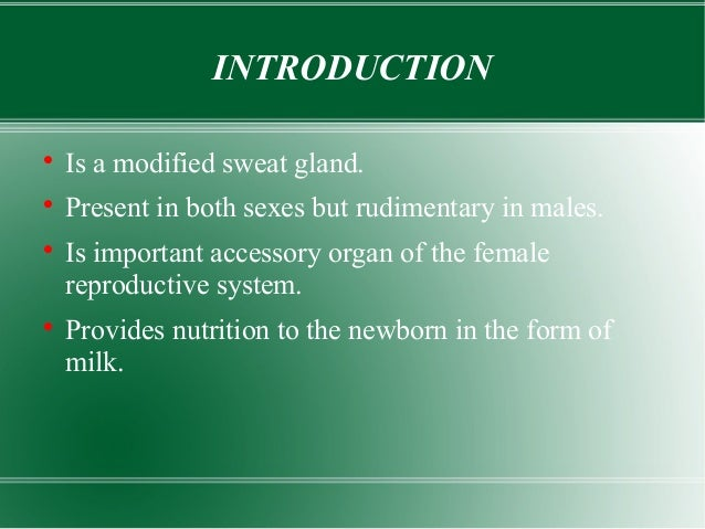 How to write an introdution on male breast cancer for a research paper?