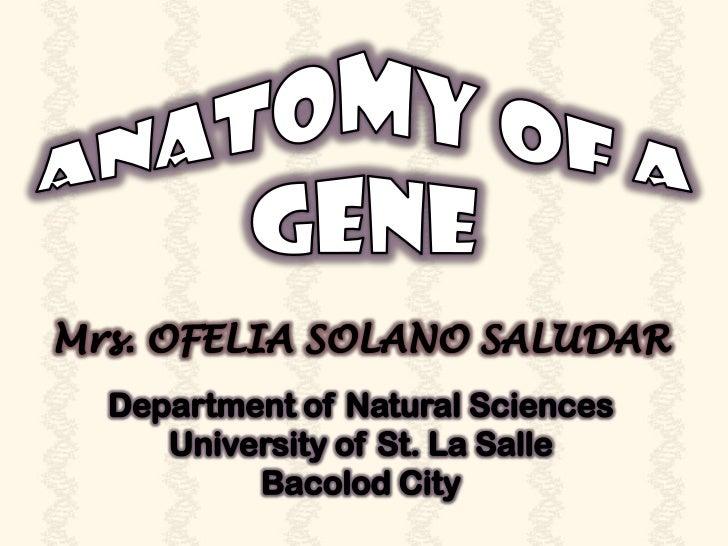 BASIC GENETIC MECHANISMS
