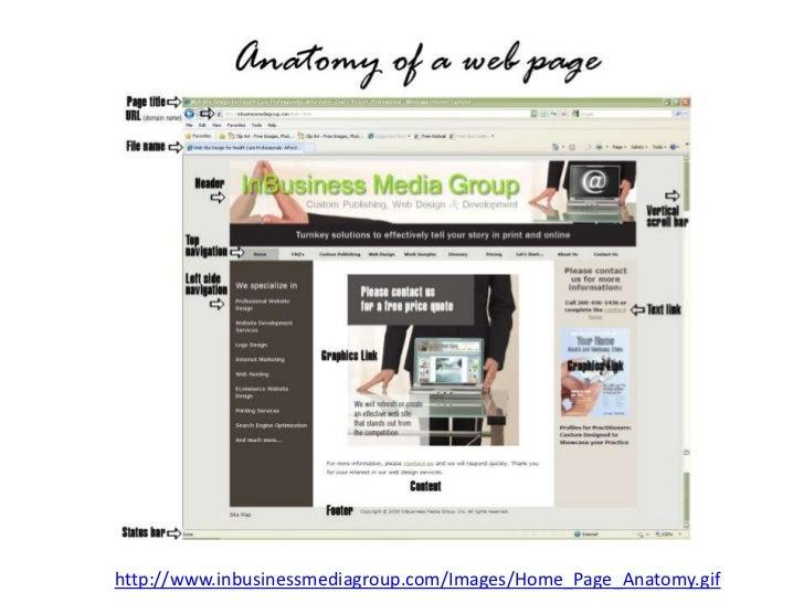 Web Anatomy 2