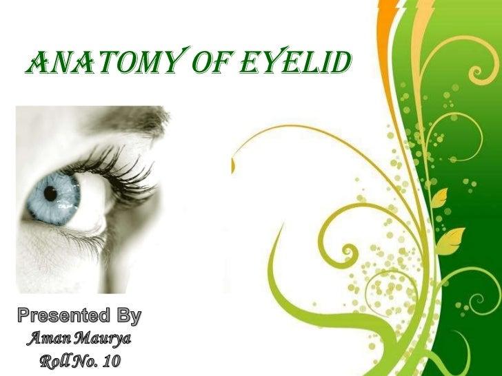 Free Powerpoint Templates ANATOMY OF EYELID