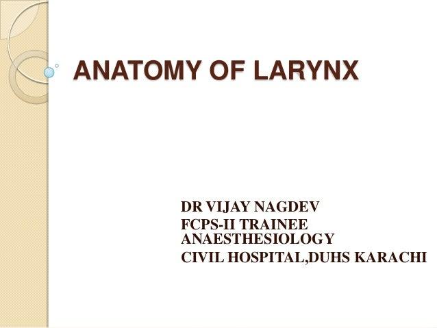 ANATOMY OF LARYNXDR VIJAY NAGDEVFCPS-II TRAINEEANAESTHESIOLOGYCIVIL HOSPITAL,DUHS KARACHI