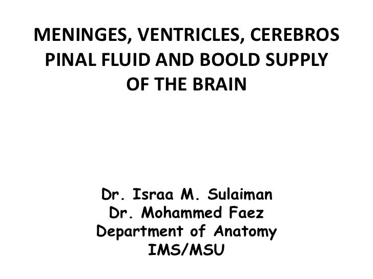MENINGES, VENTRICLES, CEREBROS  PINAL FLUID AND BOOLD SUPPLY           OF THE BRAIN           Dr. Israa M. Sulaiman       ...
