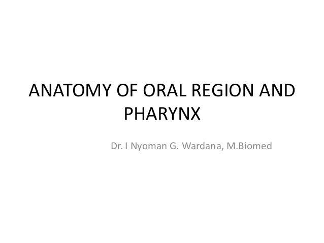 ANATOMY OF ORAL REGION AND PHARYNX Dr. I Nyoman G. Wardana, M.Biomed
