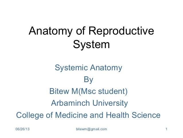 06/26/13 bitewm@gmail.com 1Anatomy of ReproductiveSystemSystemic AnatomyByBitew M(Msc student)Arbaminch UniversityCollege ...