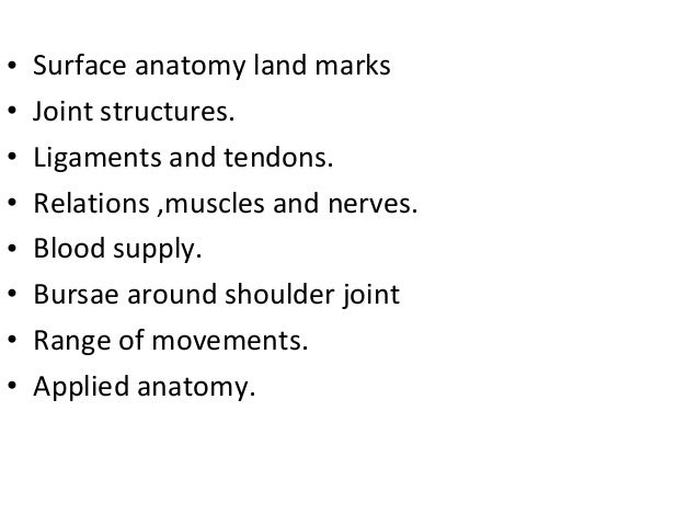 Surface anatomy of shoulder