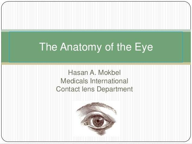 Anatomy of the eye presentation