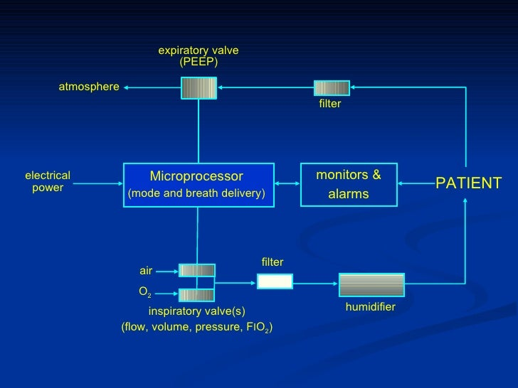 Expiratory Valve Ventilator f i o 2 Expiratory Valve