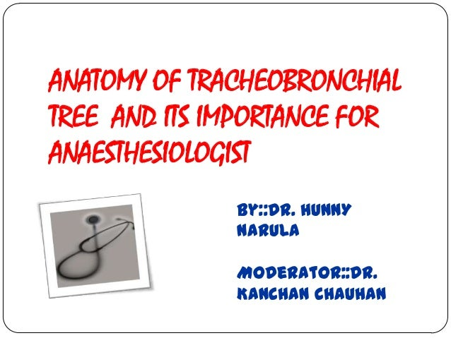 ANATOMY OF TRACHEOBRONCHIALTREE AND ITS IMPORTANCE FORANAESTHESIOLOGIST              By::Dr. HUNNY              NARULA    ...