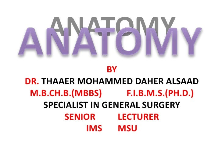 ANATOMY<br />ANATOMY<br />By<br />Dr. THAAER MOHAMMED DAHER ALSAAD<br />M.B.Ch.B.(MBBS)           F.I.B.M.S.(Ph.D.)<br />S...