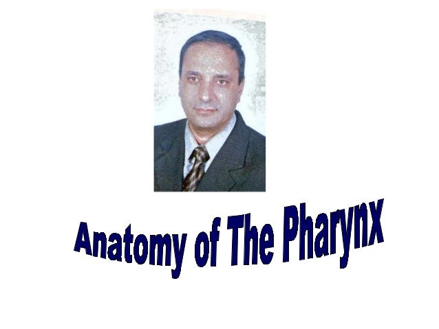 Anatomy of The pharynx Site Midline of the neck From skull base to esophagus In front of upper 6 Cervical vertebra Behind ...