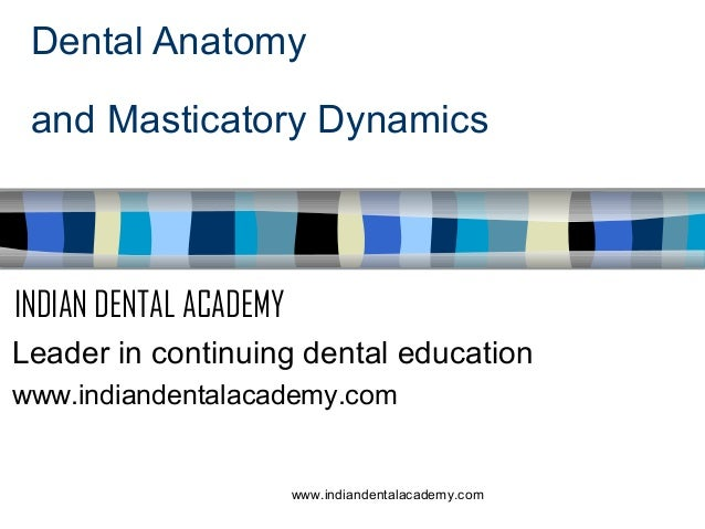 Dental Anatomy and Masticatory Dynamics  INDIAN DENTAL ACADEMY Leader in continuing dental education www.indiandentalacade...