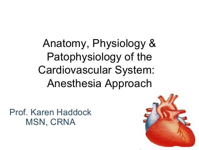 Anatomy, physiology & patophysiology of the cardiovascular