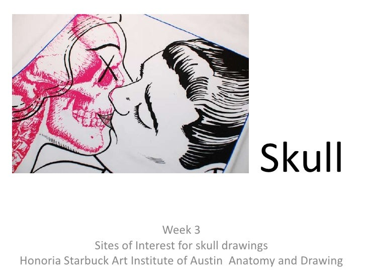 Skull<br />Week 3<br />Sites of Interest for skull drawings<br />Honoria Starbuck Art Institute of Austin  Anatomy and Dra...